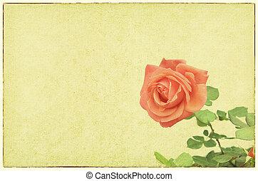 rosas, diseño, en, grunge, y, estilo retro