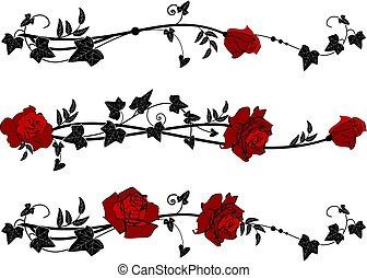 rosas, divisores, hera
