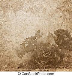 rosas, en, papel, fondo.