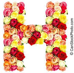 rosas, flor, h, alfabeto