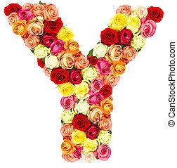 rosas, flor, y, alfabeto