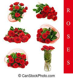 rosas, jogo