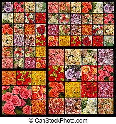 rosas, padrão