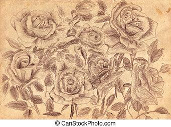 rosas, papel, viejo