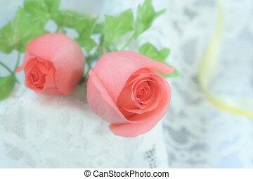 rosas rosa, gasa