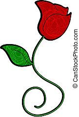 rose, élégance