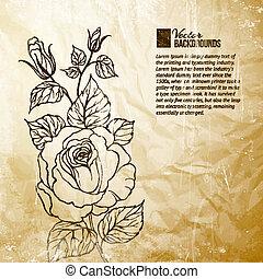 rose., シルエット