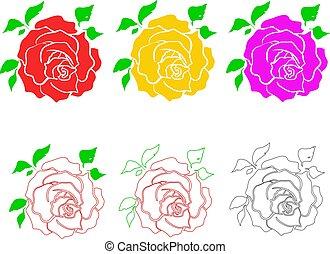 rose 002