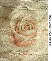 rose, abstrakt, grunge, hintergrund