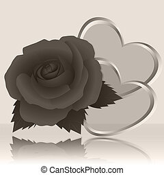 Rose and gray background