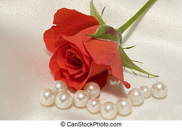 Rose and pearls - A macro of a tiny rosebud with scattered...