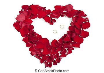 rose, anneaux, pétales