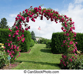 A rose archway and a US flag in the background.