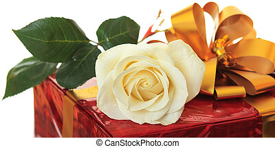 Rose as a gift.