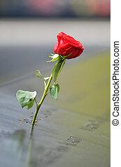 Red rose at World Trade Center memorial.