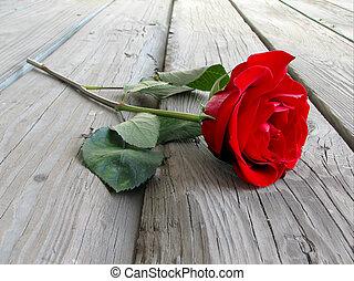 rose, auf, holz