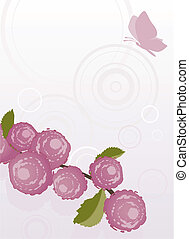 Rose background with butterfly