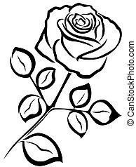 Rose black outline - Black vector outline of single rose...