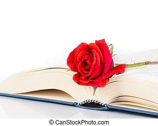 rose, blanc, Livre, rouges, fond