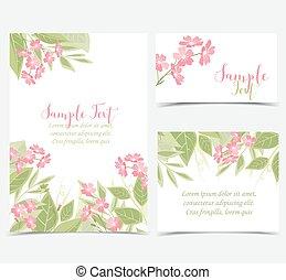 rose bloemen, achtergronden