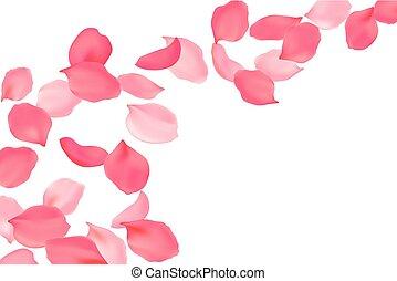 rose, blossom., pétales, rose, voler, clair, illustration, ...
