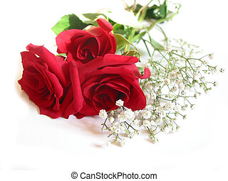 rose, bouquet, blanc