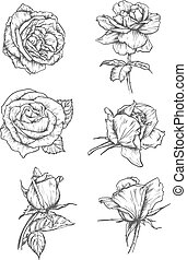 Rose buds icons. Flower sketch emblems