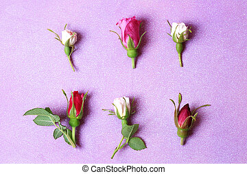 rose buds on a purple wooden background in retro style shabby chic top view a gentle place for congratulations