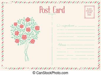 Rose bush postcard.