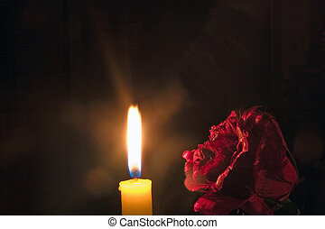 Rose by candle light - A red rose partly illuminated by a...
