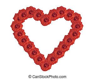 rose, cadre, flowers.