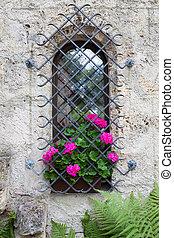 rose, château, fenêtre, fleurs, vif