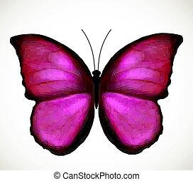 rose, clair, vecteur, butterfly.
