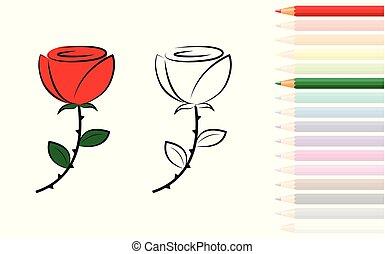 rose, coloration, crayons, livre