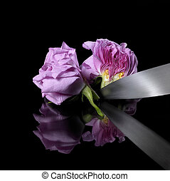 rose, divisées deux, couteau