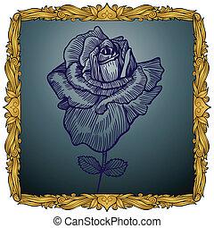 rose, encadré