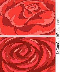 rose, ensemble, arrière-plans