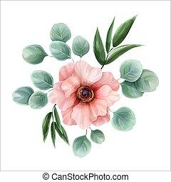 rose, eucalyptus, fleur, illustration., aquarelle, feuilles, entouré, anémone, vecteur, ruscus, design., botanique, italien