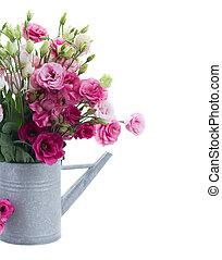 rose, eustoma, bouquet, arrosoire, fleurs