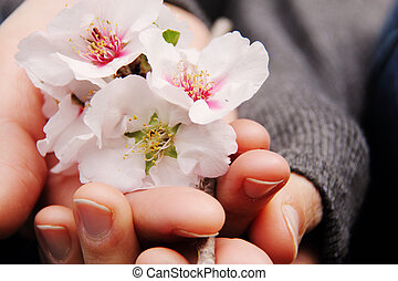 rose, femme, fleurs, tenue