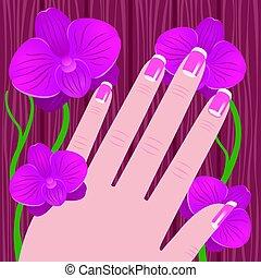 rose, femme, manucure, arbre, francais, main, fond, orchidée
