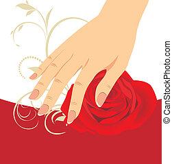 rose, femme, rouges, main