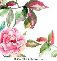 rose, feuilles, fleur, vert
