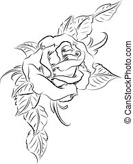 rose, feuilles