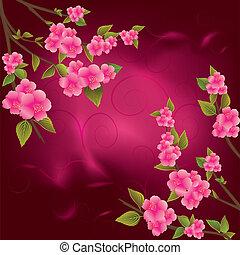 rose, fleurs cerise