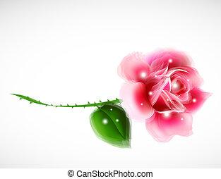 Rose Floral Design Element. Vector