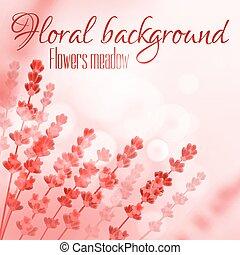 rose, floral, fleur, pré, fond