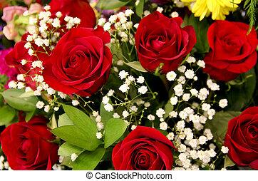 rose flower background - close up of rose blossoms make a ...