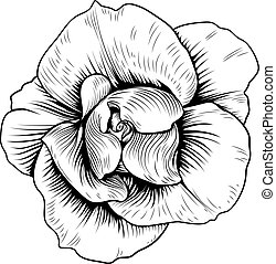 Rose Flower Engraved Vintage Woodcut Etching