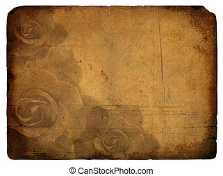 rose flower. Old postcard.